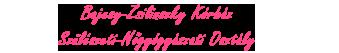 retina-bajcsy-script